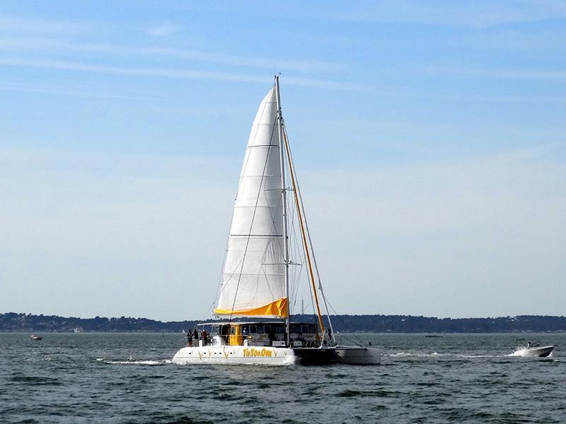 Promenade en voilier sur le Bassin d'Arcachon